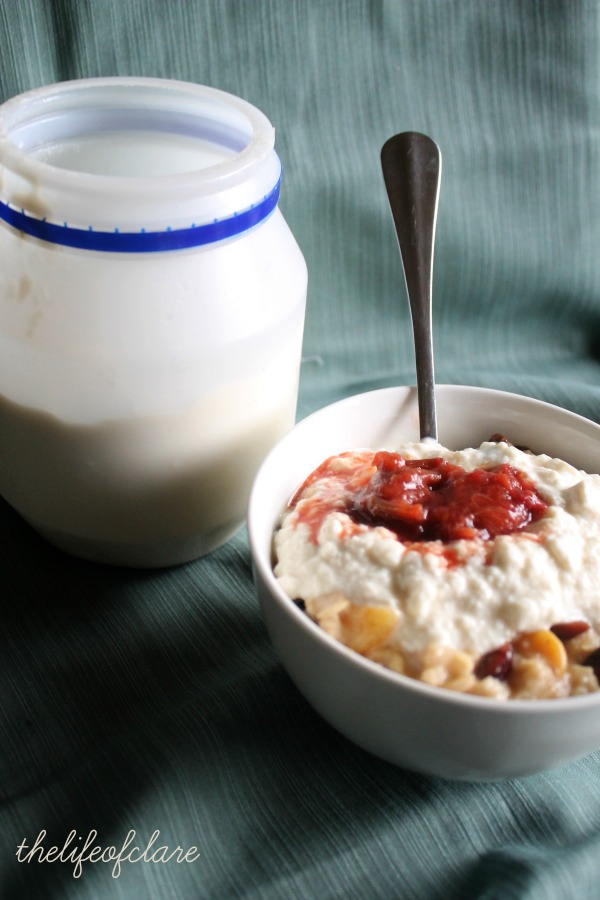 yoghurt on porridge