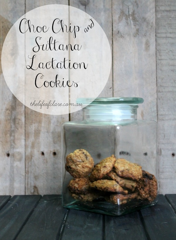Choc Chip and Sultana lactation cookies