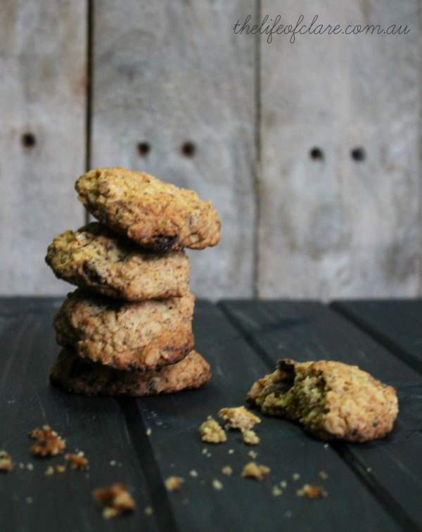 sultana and chocolate lactation cookies