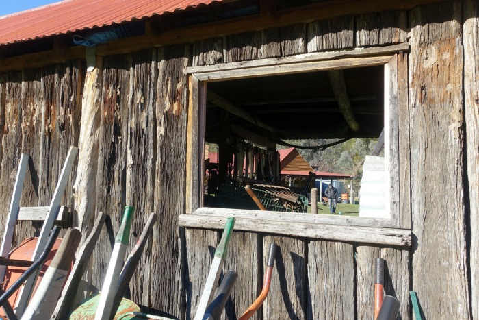 toolshed wollangarra